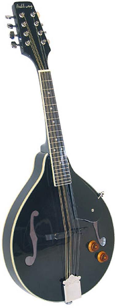 Ashbury A Style Electro Mandolin, Black Electro, spruce top, mahogany body, F-hole, bridge P/U, tone & vol..