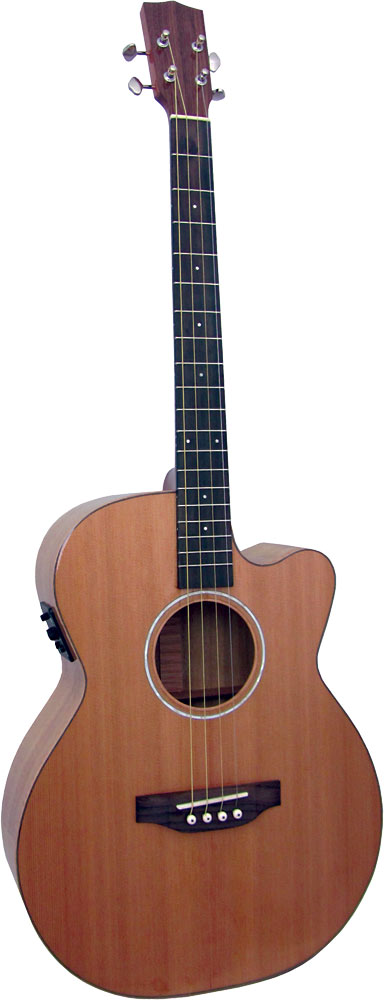 Ashbury Lindisfarne Tenor Guitar Solid cedar top, Solid koa back and sides. Cutaway with Fishman pick-up.
