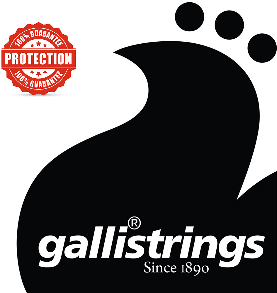Galli Plain Ball end string .010
