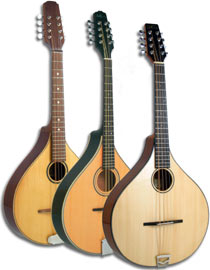 Fretted Instruments Catalogue