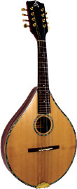Ashbury Celtic Mandolin, Solid Spruce Solid Alaskan spruce top, solid Senna Siamea body, designed by Phil Davidson.