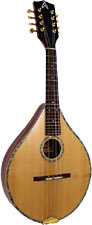 Ashbury Celtic Mandolin, Electro Solid Alaskan spruce top, solid rosewood body, Headway snake p/u. Style S.