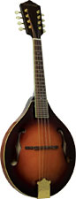 Ashbury A Style Bluegrass Mandolin Solid carved AA spruce top with solid maple back and sides. Ivoroid binding.