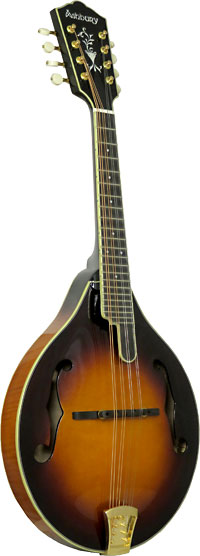 Ashbury A Style Bluegrass Mandolin Solid carved AA spruce top, solid curly maple back and sides. Ivoroid binding.