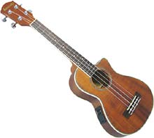 Ashbury Tenor Ukulele, Electro Acoustic Cutaway, pickup & EQ. Acacia koa body, bound fingerboard, Aquila strings.