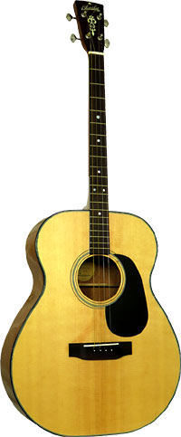 Blueridge Acoustic Tenor Guitar Contemporary Series. Solid Sitka spruce top with scalloped braces. Tuned CGDA