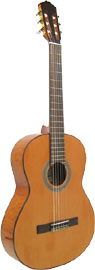 Delgada Classical Guitar, Full Size Solid cedar top, piebald body, r/w f/b, wood binding.